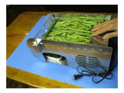 Pea Sheller Plans http://peasheller.net/electric-mr-pea-sheller-review